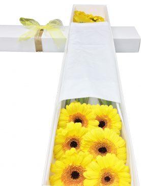 Caja con 10 Mini Gerberas amarillo