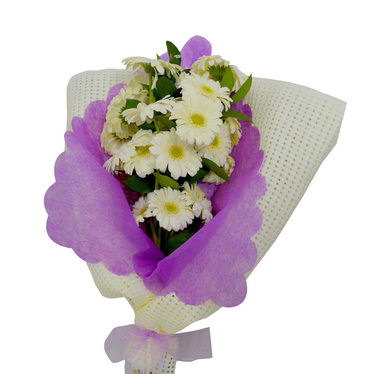 Ramo de 30 Mini Gerberas color Blanco con Malla