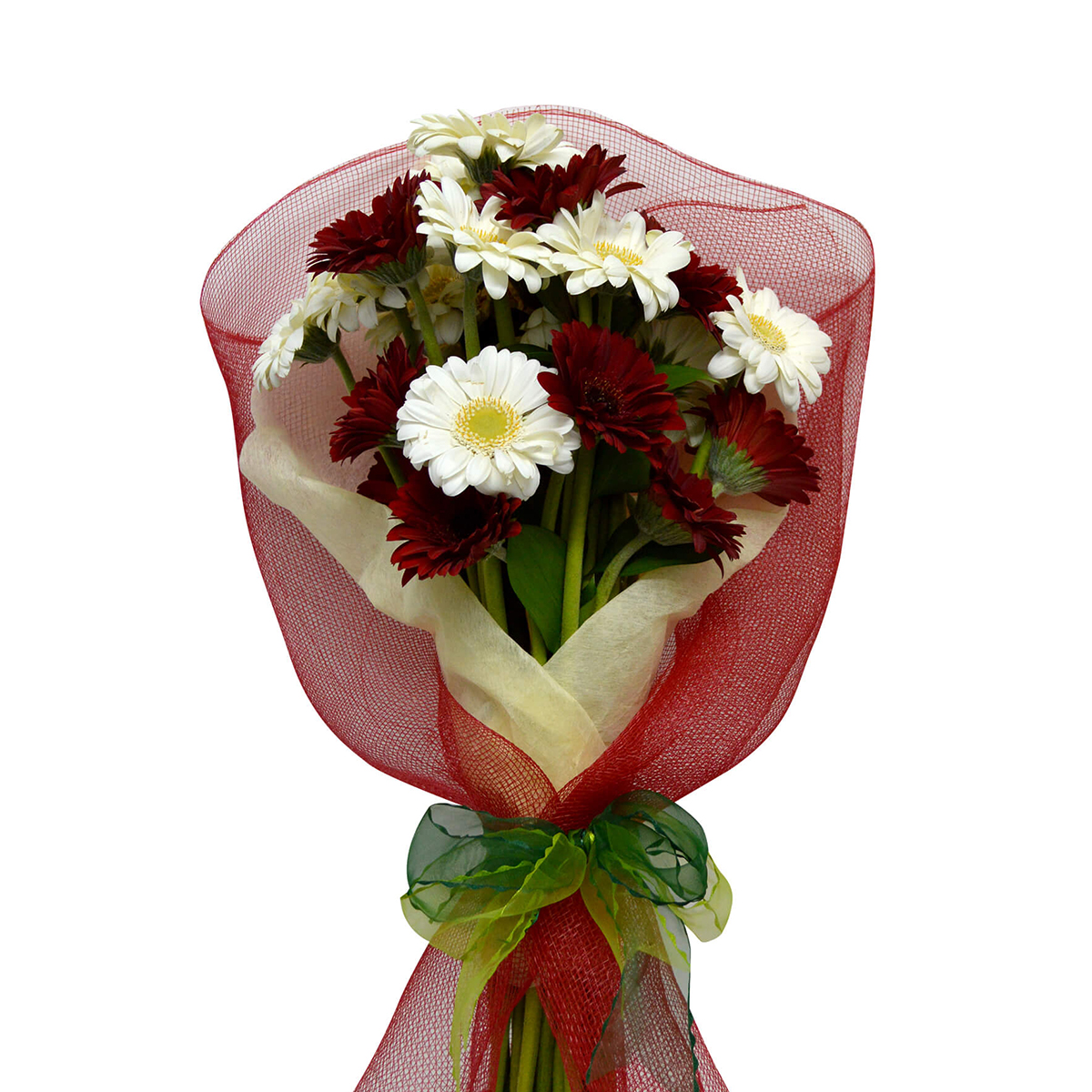 Ramo de 30 Mini Gerberas color Mixto con Malla