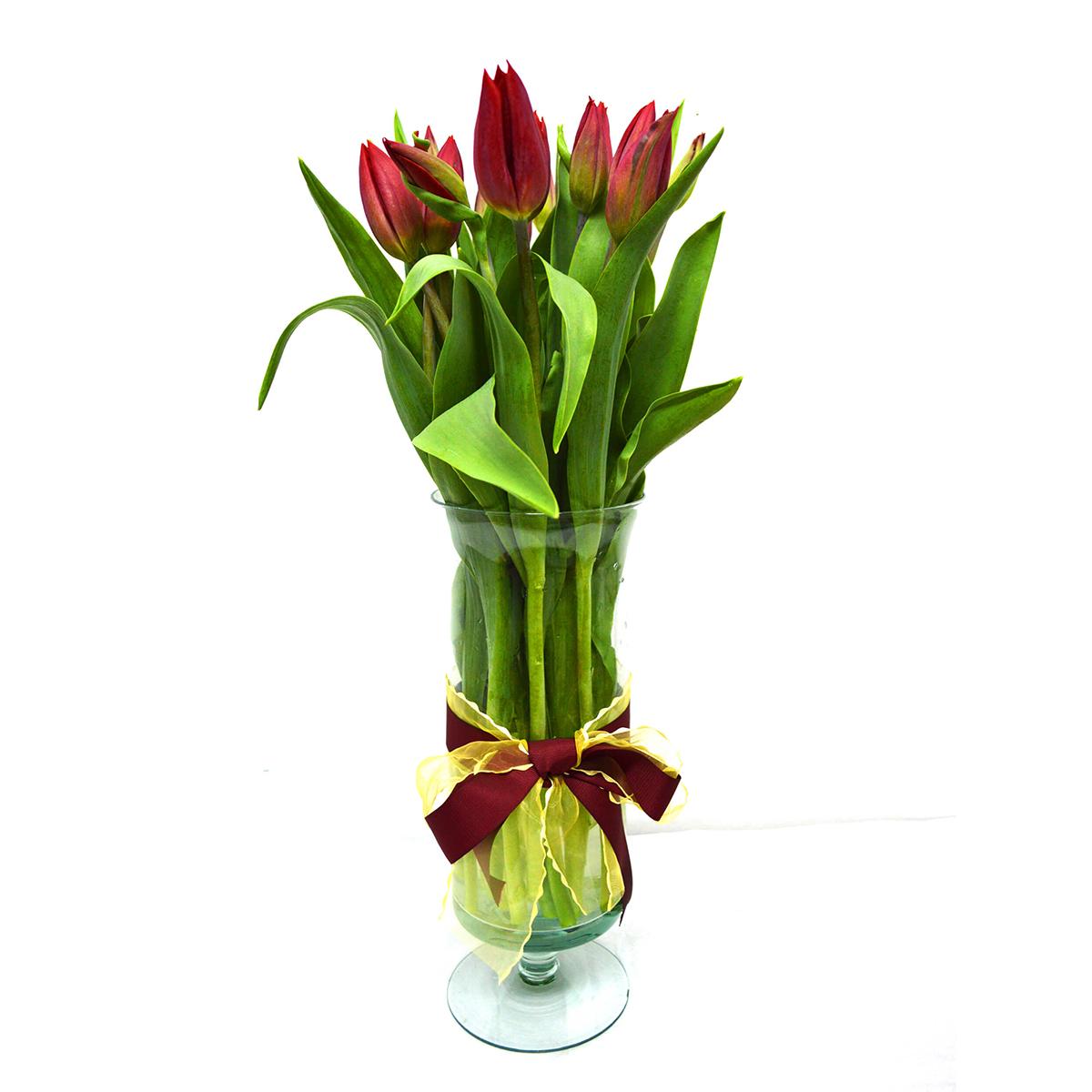 Florero con 20 Tulipanes Rojo