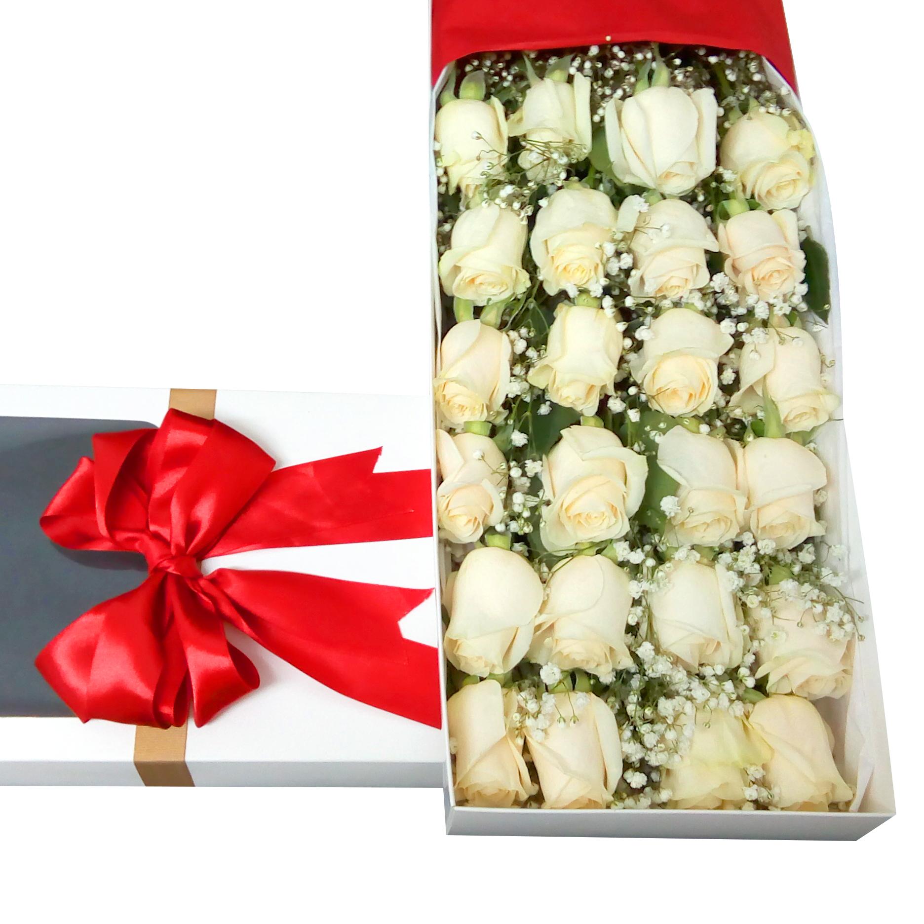 Caja de 24 Rosas de color Blanco mas Gypsophilia
