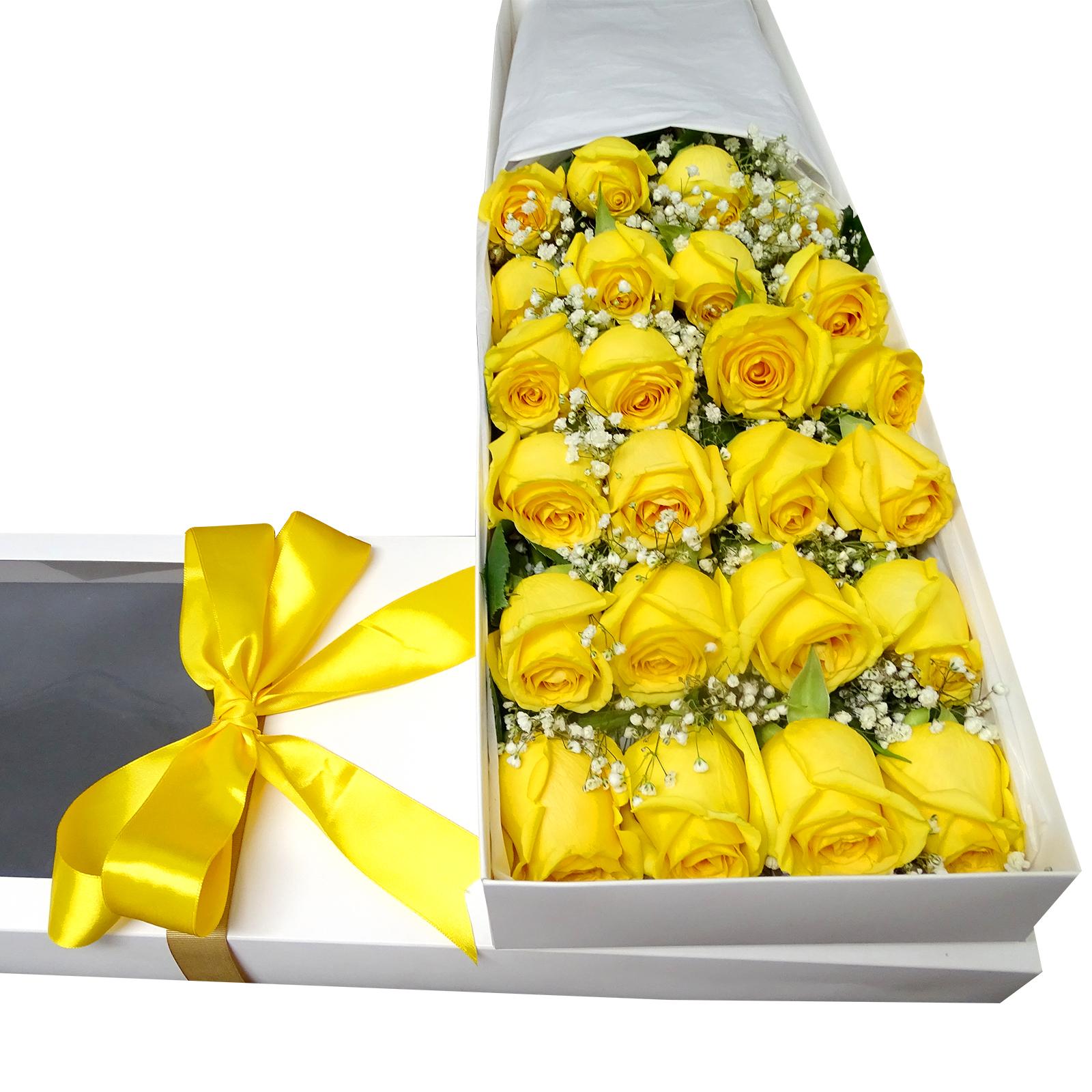 Caja de 24 Rosas de color Amarillo mas Gypsophilia