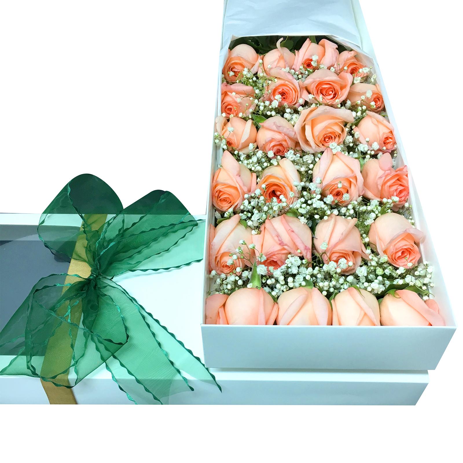 Caja de 24 Rosas de color Rosado mas Gypsophilia