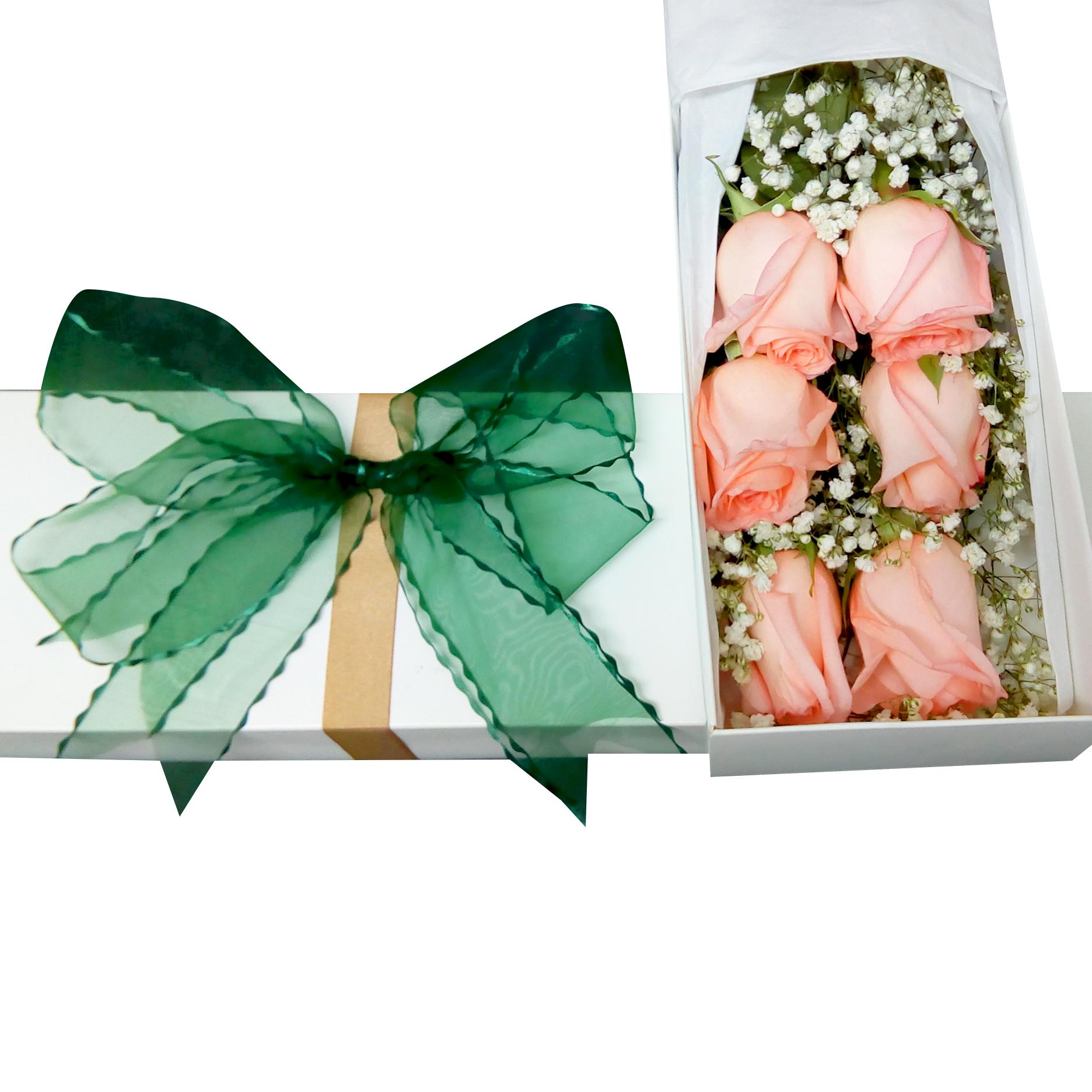 Caja con 6 Rosas de color Rosado mas Gypsophilia