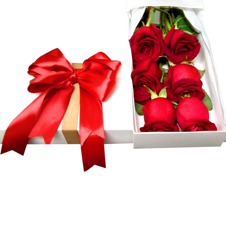 Caja con 6 bellas Rosas de color Rojo
