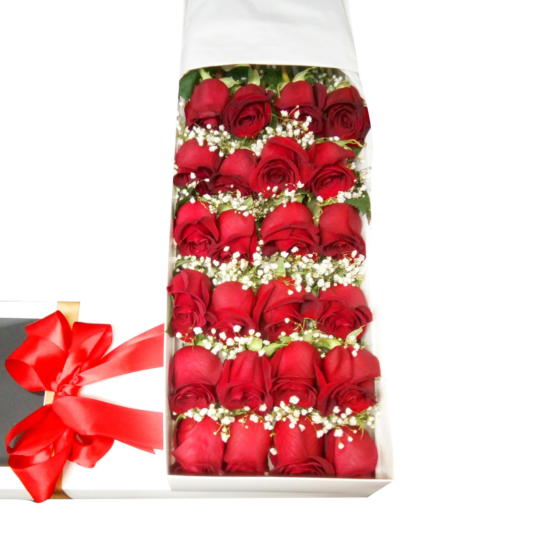 Caja con 24 Rosas Rojas y Gypsophilia
