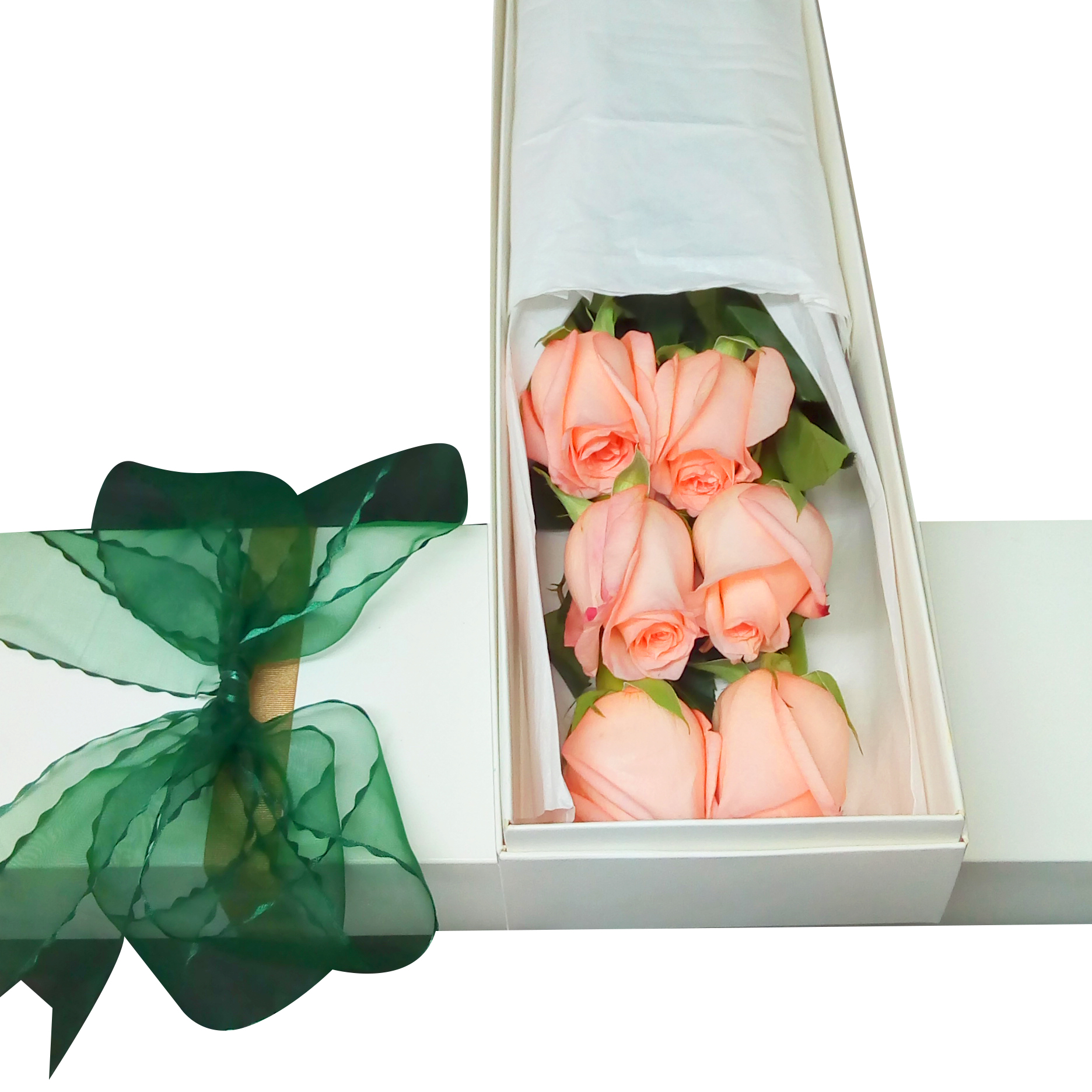 Caja con 6 bellas Rosas de color Rosado