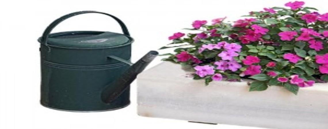 Expertos en arreglos florales