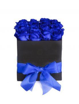 Elegante caja negra cuadrada de 24 Rosas Azul