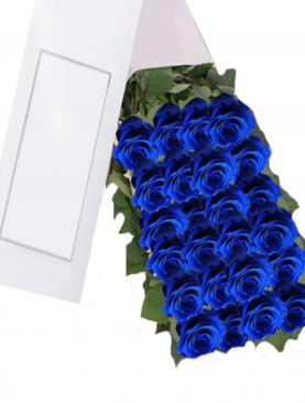 Caja de 24 Rosas de color Azul